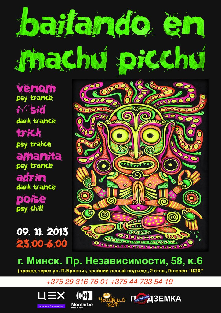 Machu Picchu Slot Machine